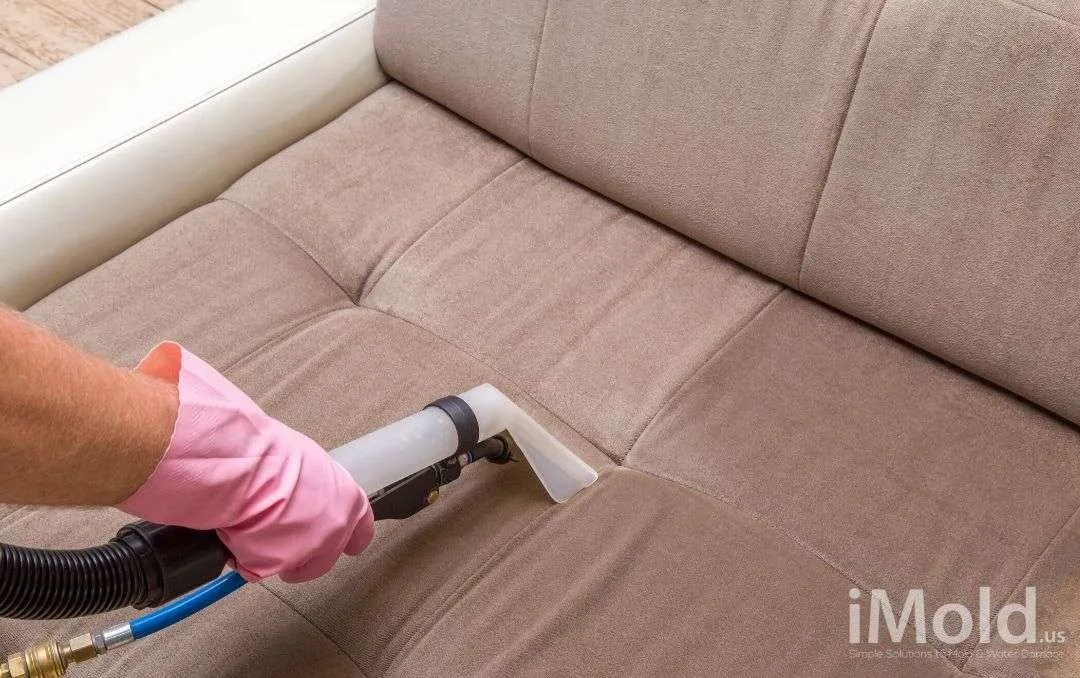 Professional Cleaning Services by iMold in Fort Myers