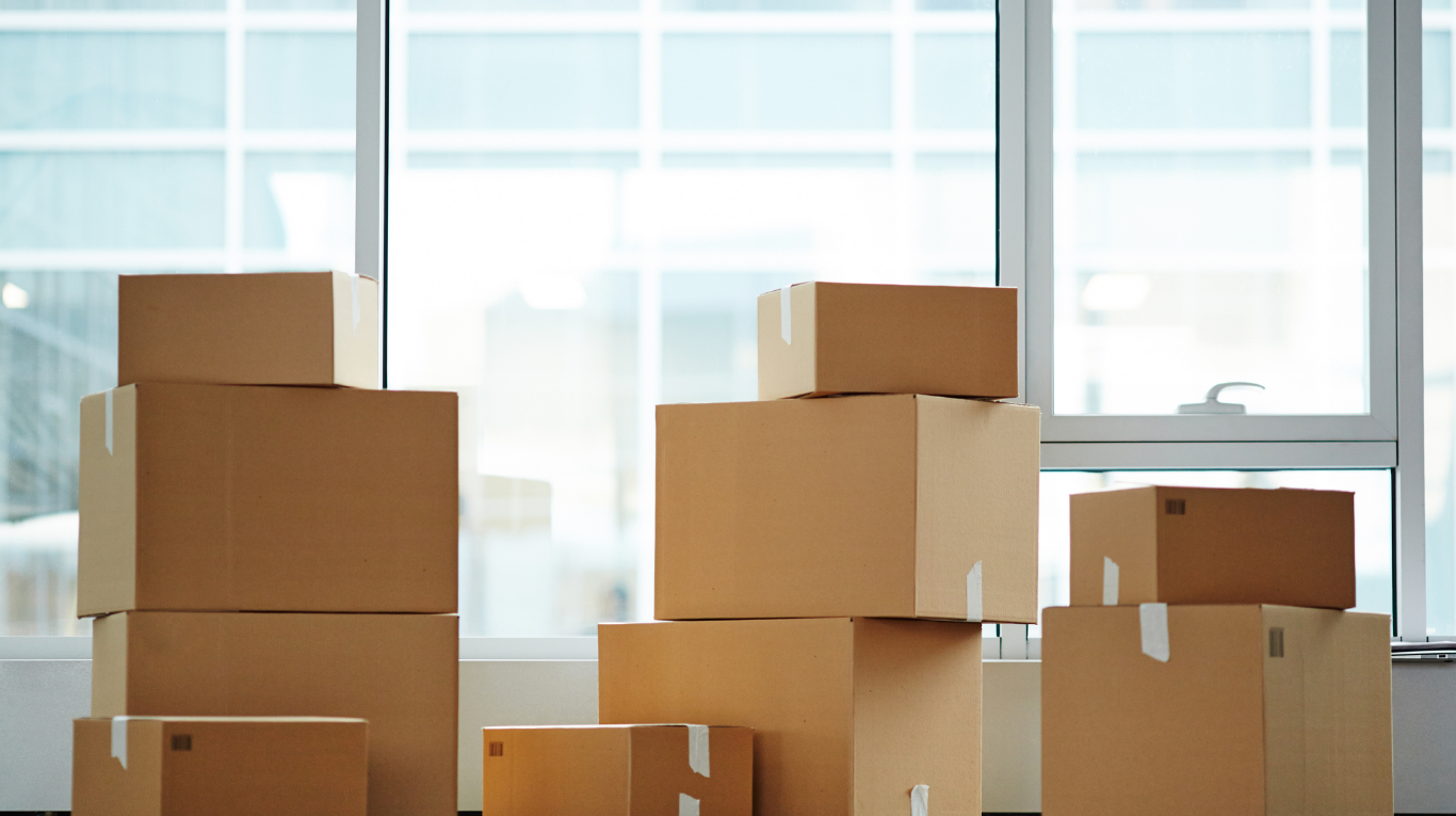 Preventing Mold on your Items in Storage