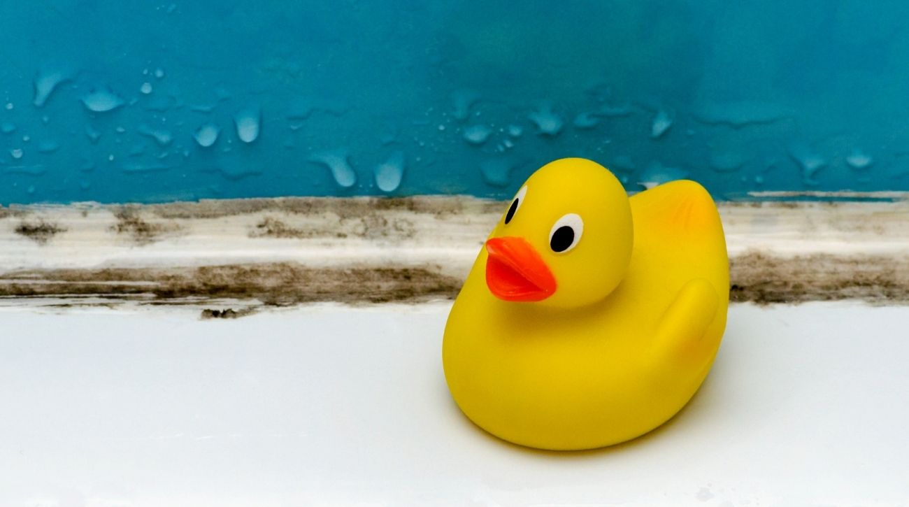 moldy tile and rubber duck