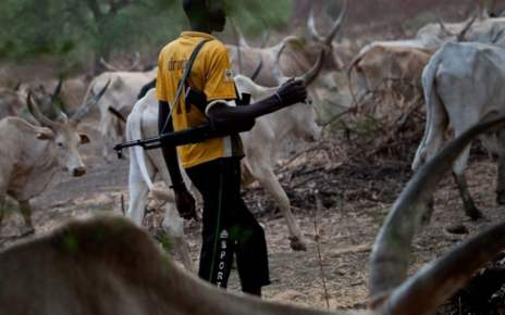 Plateau Attacks: Herders killed 41 people in Irigwe in four months- Communities demand justice