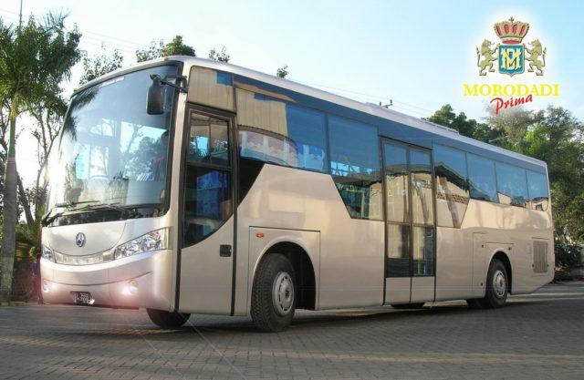 Bus Bandara Morodadi Prima