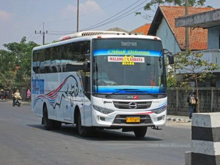 Tentrem bus