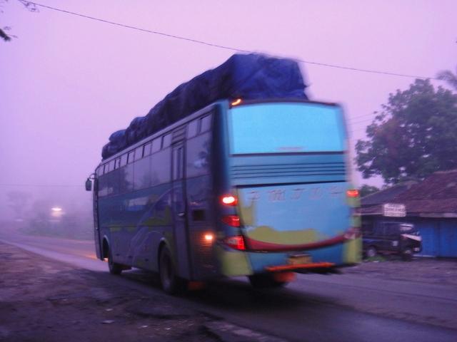 Bus – bus PO. PMTOH 1