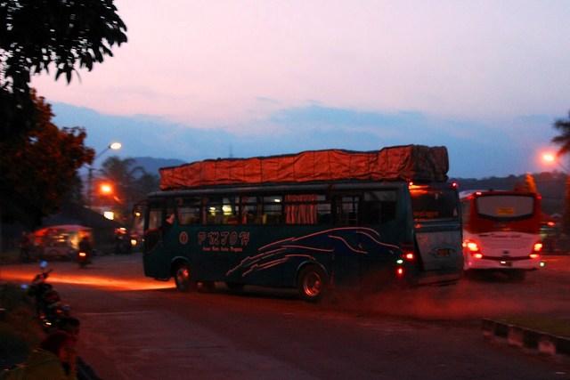 Bus – bus PO. PMTOH 10