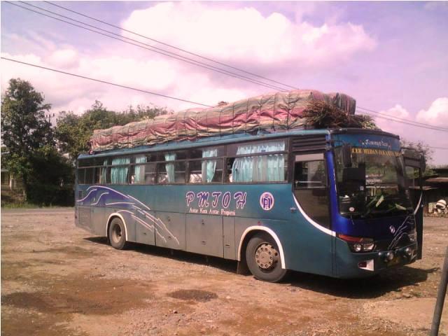 Bus – bus PO. PMTOH 3