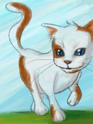 Mr. Meow
