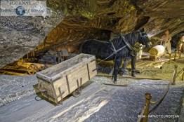 07-mines de sel de Wieliczka 08