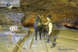 08-mines de sel de Wieliczka 09
