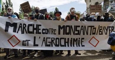 Marche mondiale contre Mosanto-Bayer et l'agro-chimie