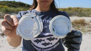 Woman holding single-use coffee up lids picked up on beach