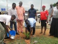 Former Council leader, Hon. Jimoh Olosugbo planting a tree