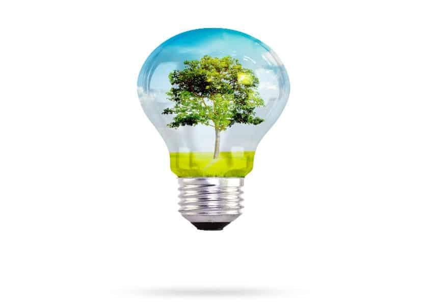 universidades verdes-Educación en sostenibilidad