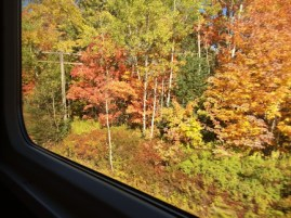fall-colours-ns-from-train