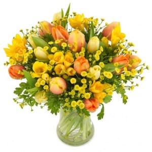 tulipani, fresie e fiori misti