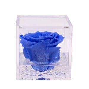 FlowerCube con rosa azzurra