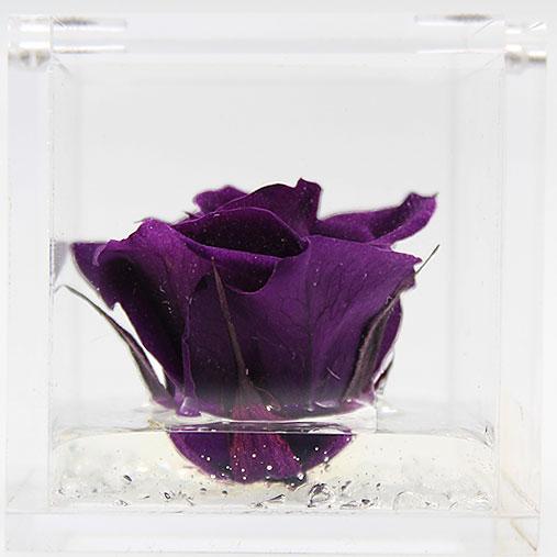 FlowerCube con rosa viola