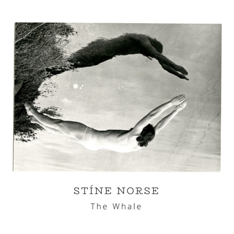 stíne norse, the whale
