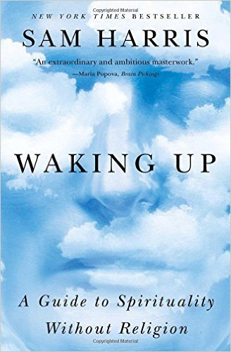 Book Cover: Waking Up: A Guide to Spirituality Without Religion by Sam Harris