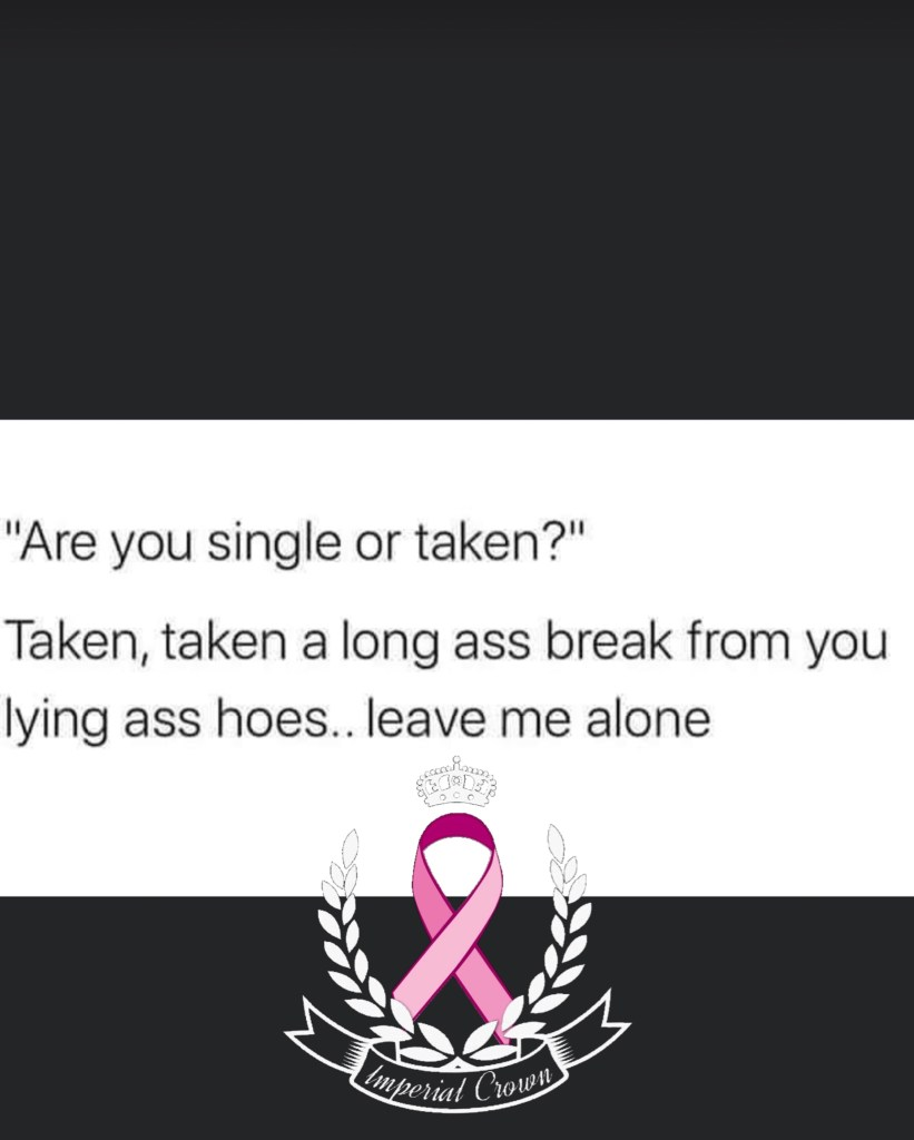 Are you single or taken taken taken a long ass break from you lying ass hoes leave me alone