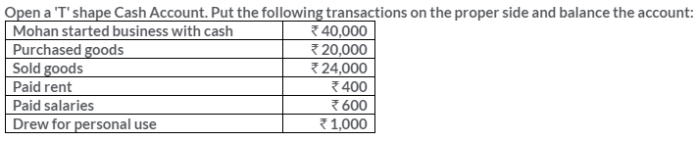 ts-grewal-solutions-class-11-accountancy-chapter-6-accounting-procedures-rules-debit-credit-9
