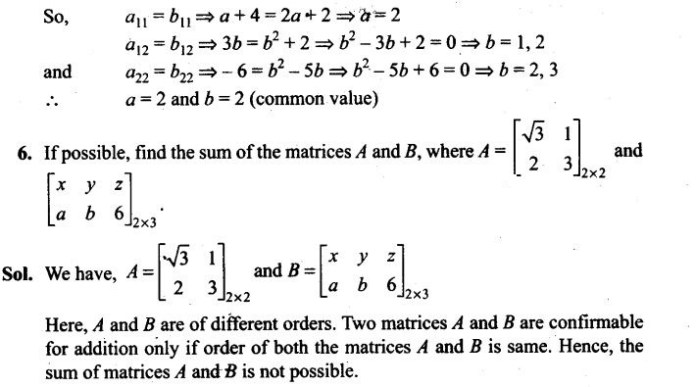 ncert-exemplar-problems-class-12-mathematics-matrices-4