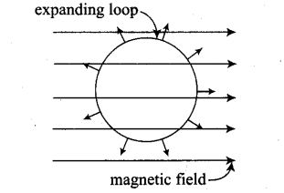 ncert-exemplar-problems-class-12-physics-electromagnetic-induction-13