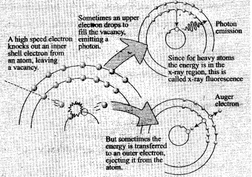 ncert-exemplar-problems-class-12-physics-atoms-33
