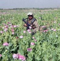 US Marines protecting CIA poppy fields in Afghanistan in 2017