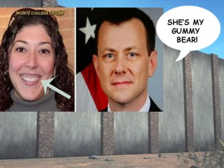 DHS Architects Study Lisa Page's Gums for New Wall Design