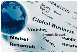 Import Export Institute Go Global