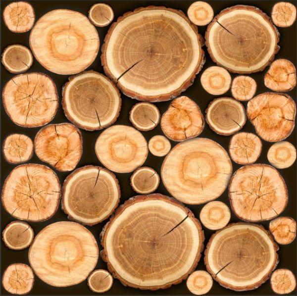 vinilo para la pared de troncos de madera