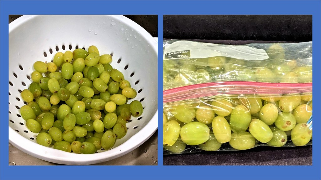 Grapes in a colander and grapes in a plastic bag.