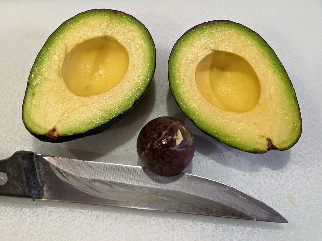 Avocado with pit removed by a knife