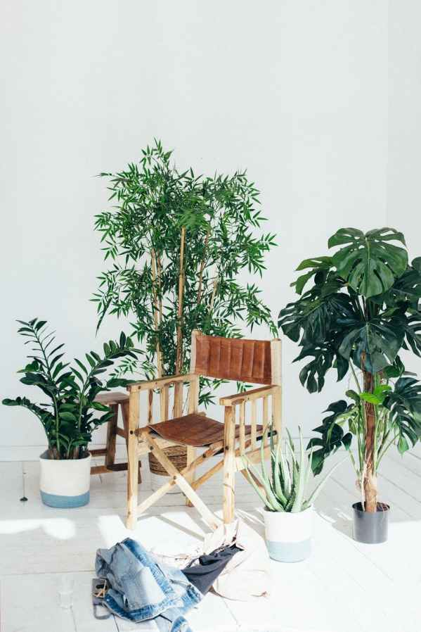 chair clothes flora furniture