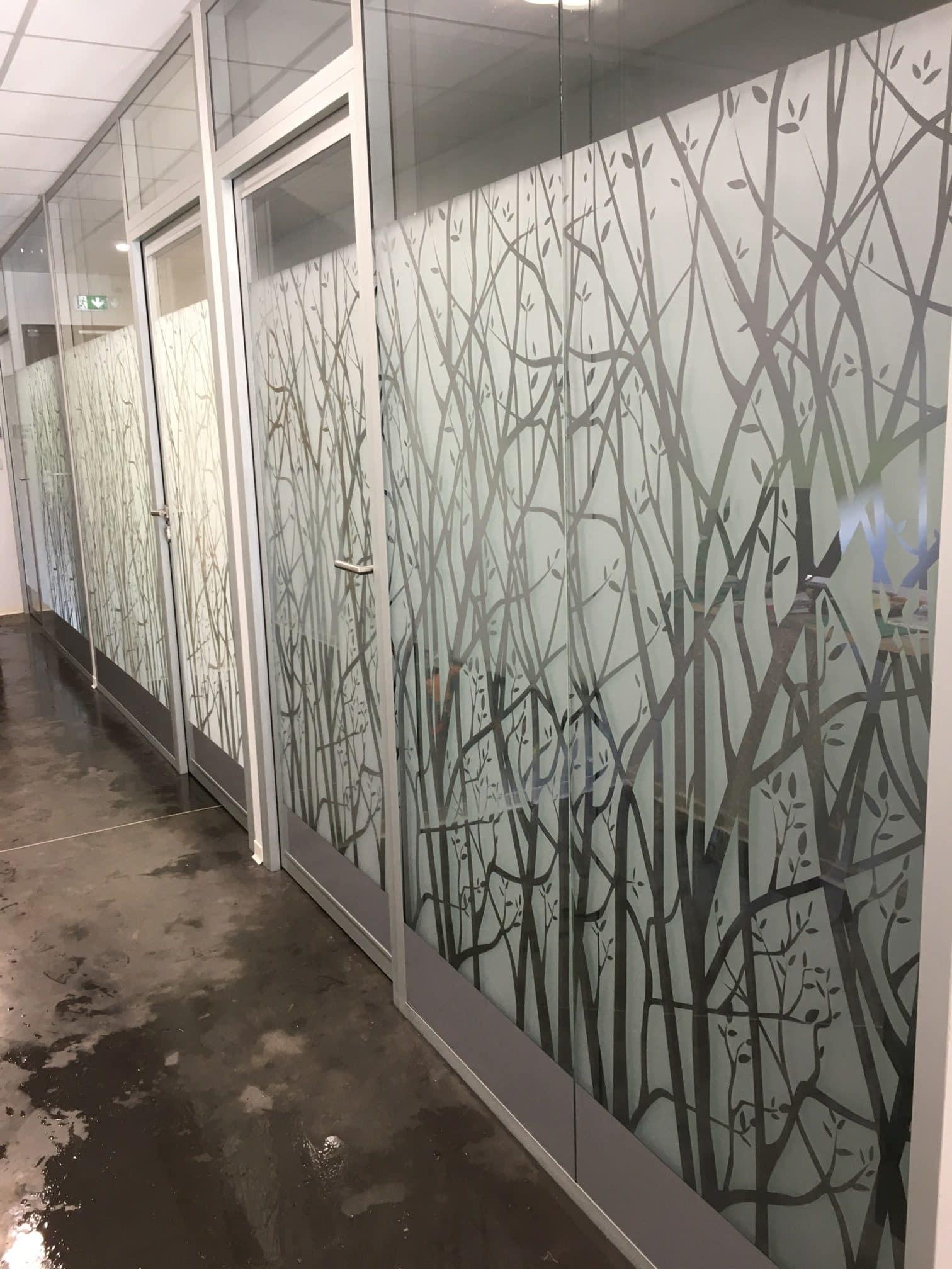 Pose dépoli (motif arbres) sur vitres - La grande Pépinière Guerrot - Quimper