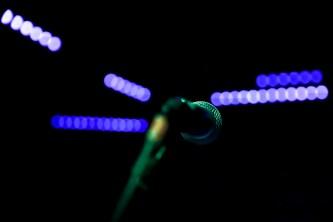 IMPRINTent, IMPRINT Entertainment, YOUR CULTURE HUB, IMPRINTentDENVER, Korine, Maquis Theater, Denver Concerts, Denver Photography, Denver Events, Aidan Hicks, Small Black, New Music Releases, Entertainment News, Grandstand HQ, Nick Javier, Marquis Theater
