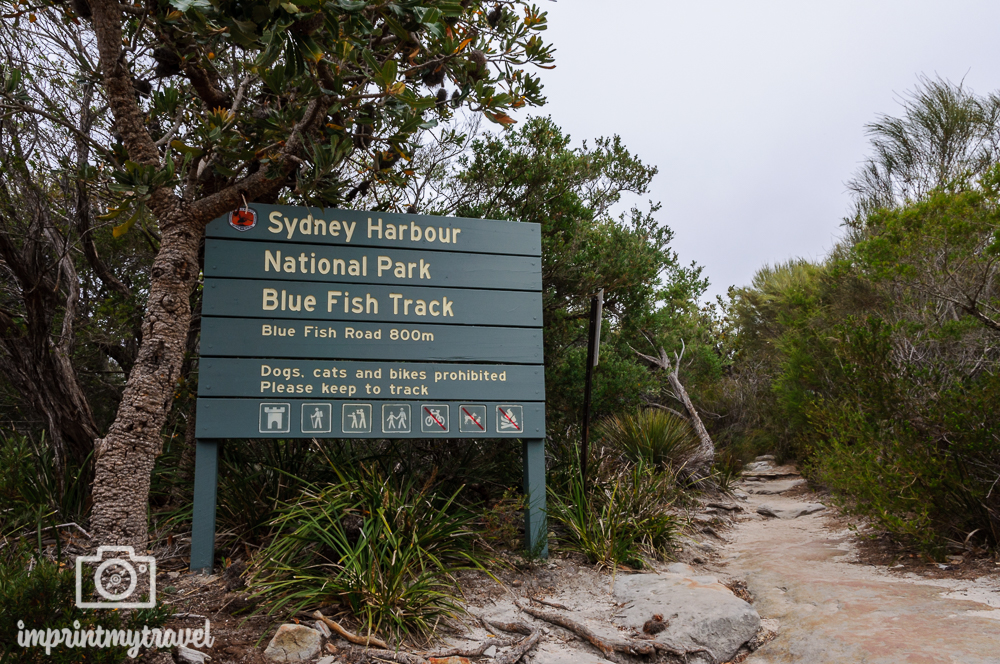 Highlights in Sydney: Wandern im Harbour National Park