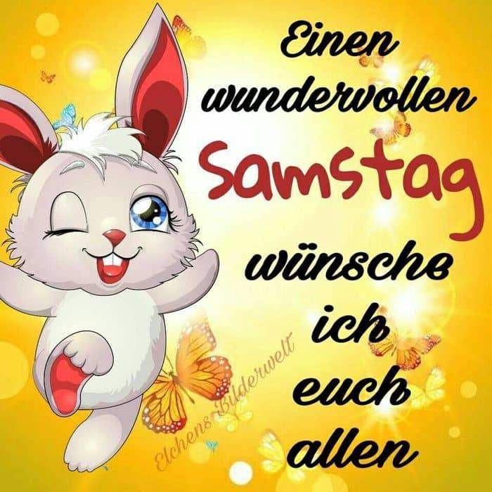 Samstag Vorbei Lustig Bilder Und Spruche Fur Whatsapp Und
