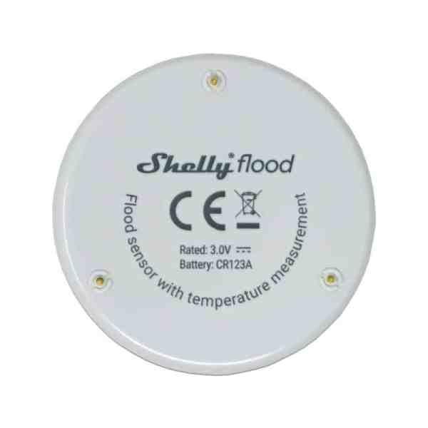 shelly-flood
