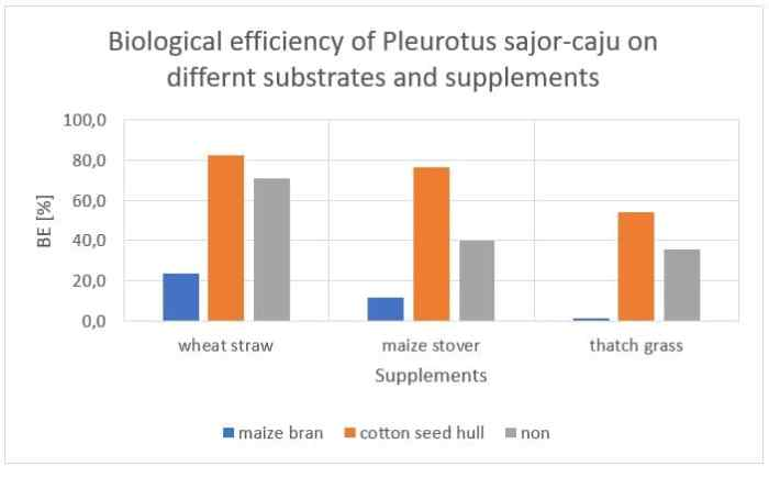 Figure 3: Influence of different substrates and supplements on the biological efficiency of P. sajor-caju