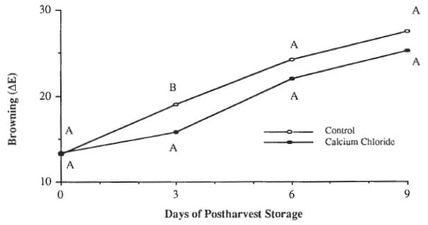Figure 5: Influence of 0.3% calcium chloride added to irrigation water on postharvest browning of mushrooms stored at 13°C in PVC-overwrapped packages