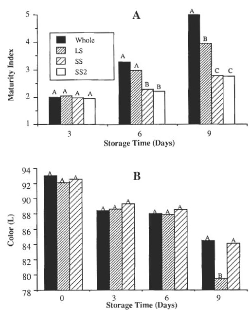 Figure 12: Influence of extent of stipe trimming at harvest on postharvest shelf life of mushrooms stored at 13°C in PCV overwrapped packages as indicated by (A) cap development and (B) browning (decrease in L). Whole: whole mushroom picked; LS: trimmed mushrooms to long stipe; SS: trimmed mushroom to short stipe; SS2: mushrooms trimmed twice