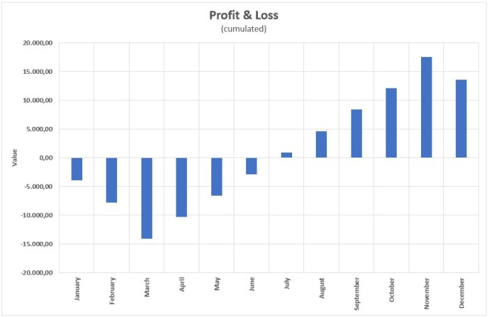 Figure 2: Example of a monthly business profit/loss chart (cumulated).