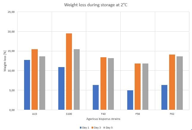 Figure 3: Weight loss of different Agaricus bisporus strains stored at 2°C