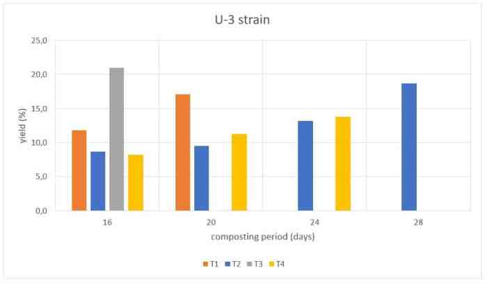 Figure 18: Yield (%) of the U-3 strain of Agaricus bisporus on compost prepared under different treatments.