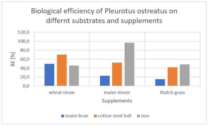 Figure 42: Interaction among supplements and substrates on BE of Pleurotus ostreatus