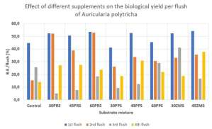 Effect of supplementation of sawdust with different supplements on the biological efficiency per flush of Auricularia polytricha
