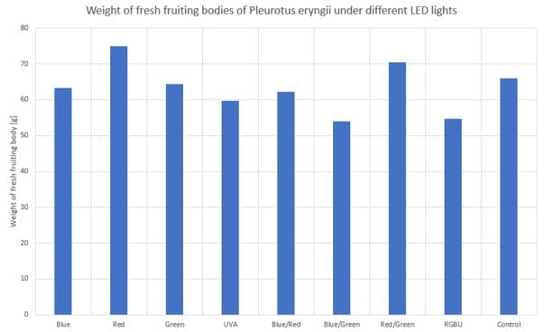Impact of different LED lights on the fresh weight of fruiting bodies of Pleurotus eryngii