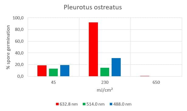 spore photosensitivity of pleurotus ostreatus