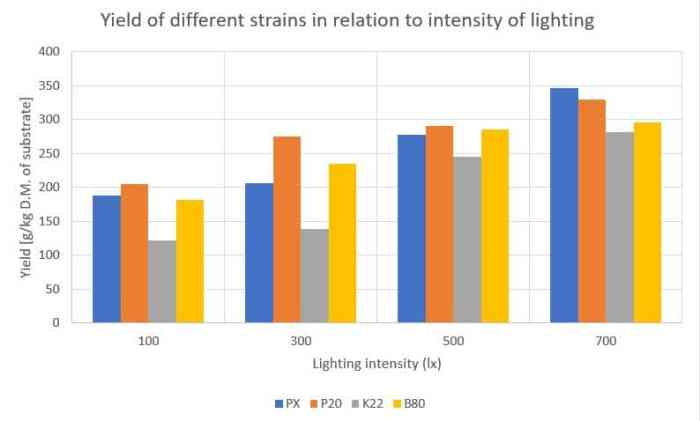 Pleurotus ostreatus_pulmonarius_Yield of different strains in relation to intensity of lighting